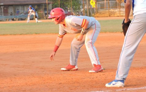 The Star Baseball Player