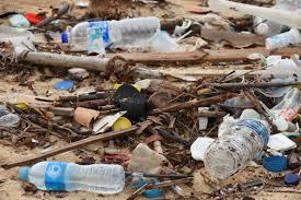 Pledge to Reduce Plastic Pollution
