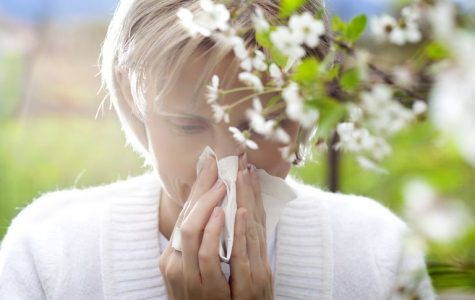 Are your allergies putting you at risk?
