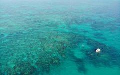 Marine Lab Field Trip