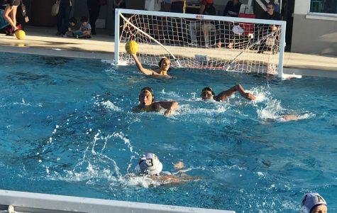 Boy's Water Polo Makes a Splash