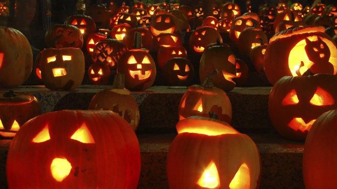 Jack o lanterns await their moment of glory.