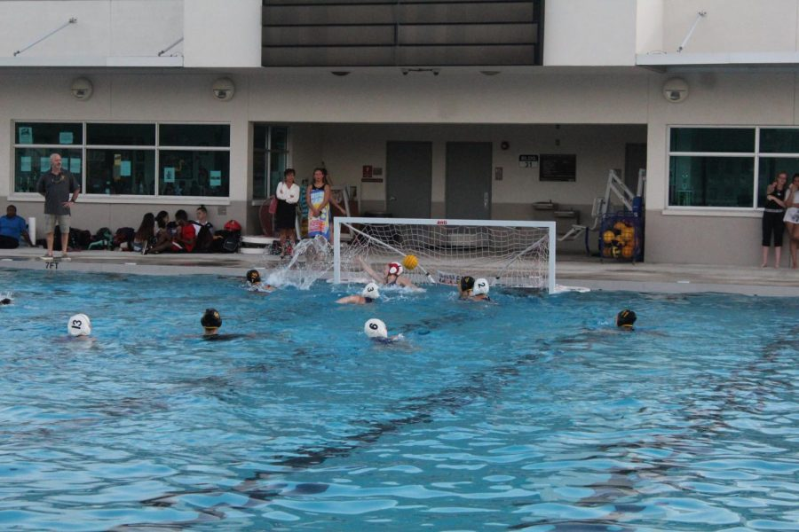 Water+Polo+Kicks+Off+to+a+Good+Start