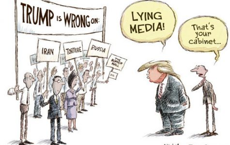 This political cartoon demonstrates the trending insult made by President Donald Trump on the regular against media that disagree with him, most famously CNN.