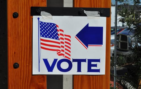 Florida's Mid-Term Elections: A Mess of Legal Actions