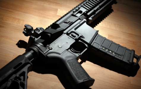 Pregnant Woman Uses AR-15 to Kill Home Intruder