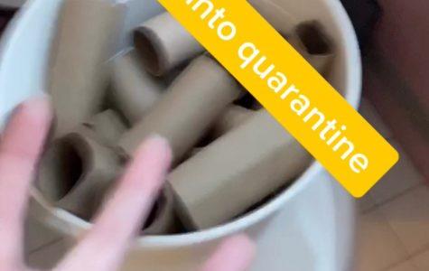 Toilet Paper Tiktok