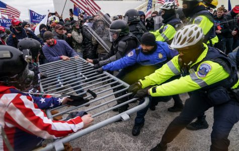 Trump and The Capital Riot