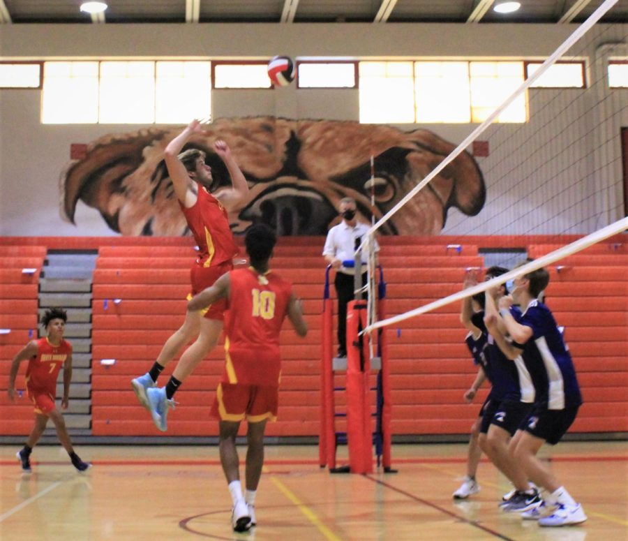 About to hit the ball over the net, senior Jonathan Hurst (8) springs into the air.